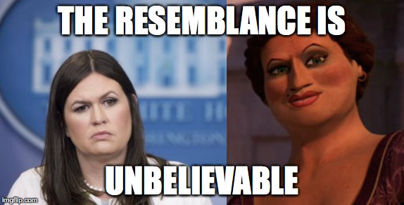 They share the same eyebrow. | THE RESEMBLANCE IS UNBELIEVABLE | image tagged in memes,funny memes | made w/ Imgflip meme maker
