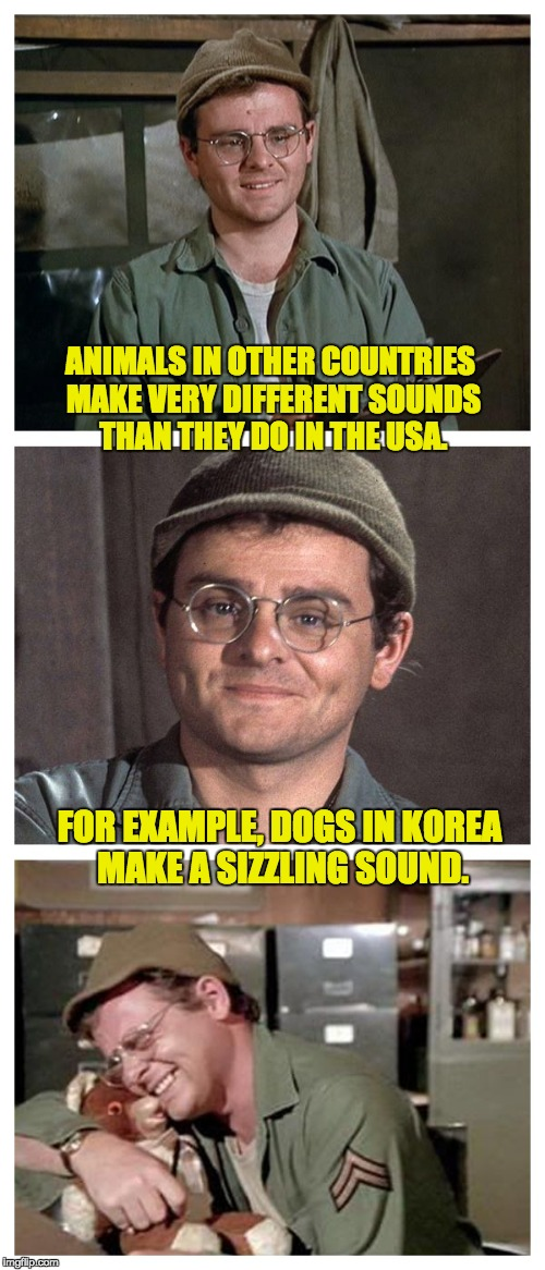 Bad Pun Radar | ANIMALS IN OTHER COUNTRIES MAKE VERY DIFFERENT SOUNDS THAN THEY DO IN THE USA. FOR EXAMPLE, DOGS IN KOREA MAKE A SIZZLING SOUND. | image tagged in bad pun radar | made w/ Imgflip meme maker