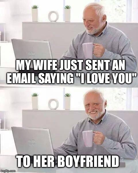 "I meme what I know.  | MY WIFE JUST SENT AN EMAIL SAYING ""I LOVE YOU"" TO HER BOYFRIEND 