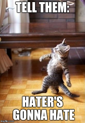 Cool Cat Stroll Meme | TELL THEM: HATER'S GONNA HATE | image tagged in memes,cool cat stroll | made w/ Imgflip meme maker
