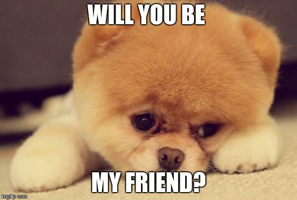 WILL YOU BE MY FRIEND? | image tagged in cute dog,sad puppy,cute animals,chicken nuggets | made w/ Imgflip meme maker