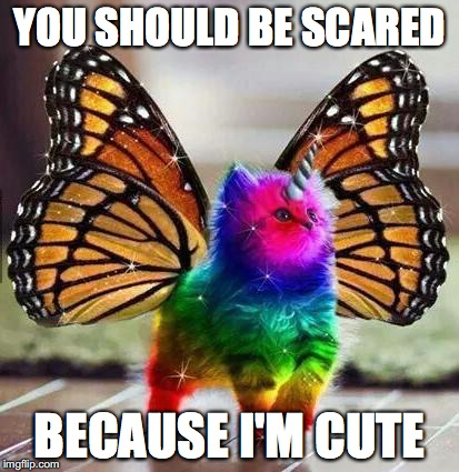 Rainbow unicorn butterfly kitten | YOU SHOULD BE SCARED BECAUSE I'M CUTE | image tagged in rainbow unicorn butterfly kitten | made w/ Imgflip meme maker