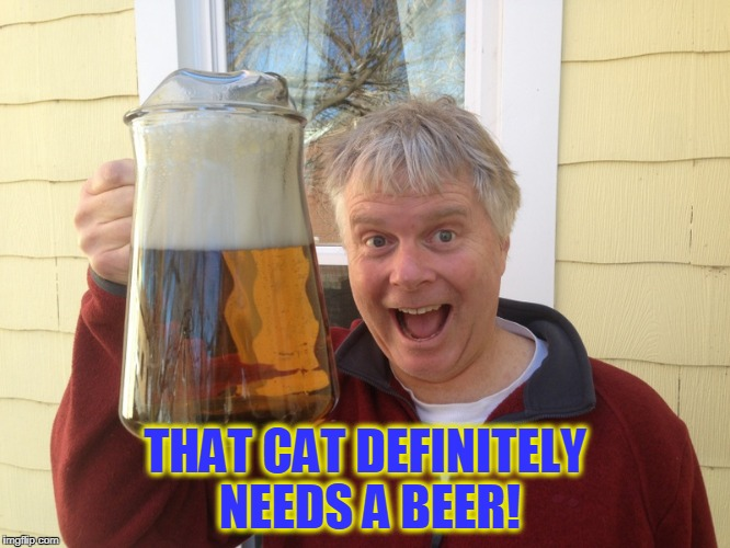 THAT CAT DEFINITELY NEEDS A BEER! | made w/ Imgflip meme maker