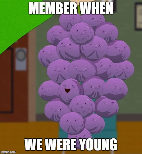 member berries  | MEMBER WHEN WE WERE YOUNG | image tagged in member berries | made w/ Imgflip meme maker