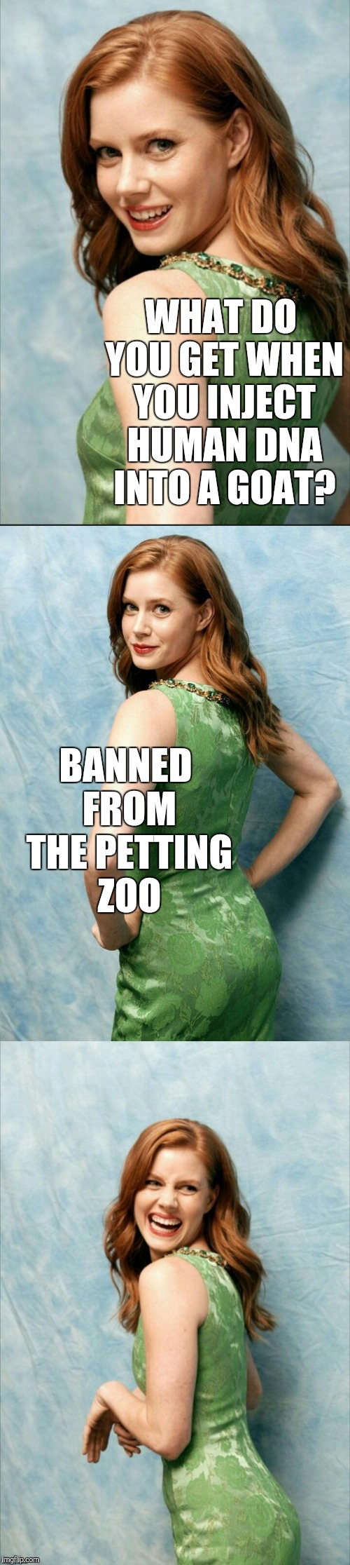 Introducing my new Amy Adams joke template! Template link is in the comments   | WHAT DO YOU GET WHEN YOU INJECT HUMAN DNA INTO A GOAT? BANNED FROM THE PETTING ZOO | image tagged in amy adams joke template,amy adams,jbmemegeek,bad puns | made w/ Imgflip meme maker