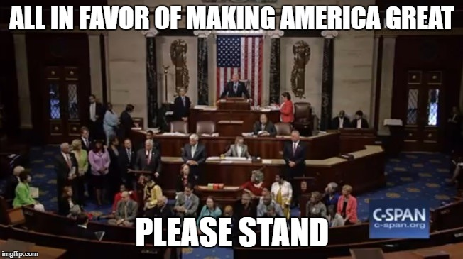Democrat Sit In | ALL IN FAVOR OF MAKING AMERICA GREAT PLEASE STAND | image tagged in democrat sit in | made w/ Imgflip meme maker