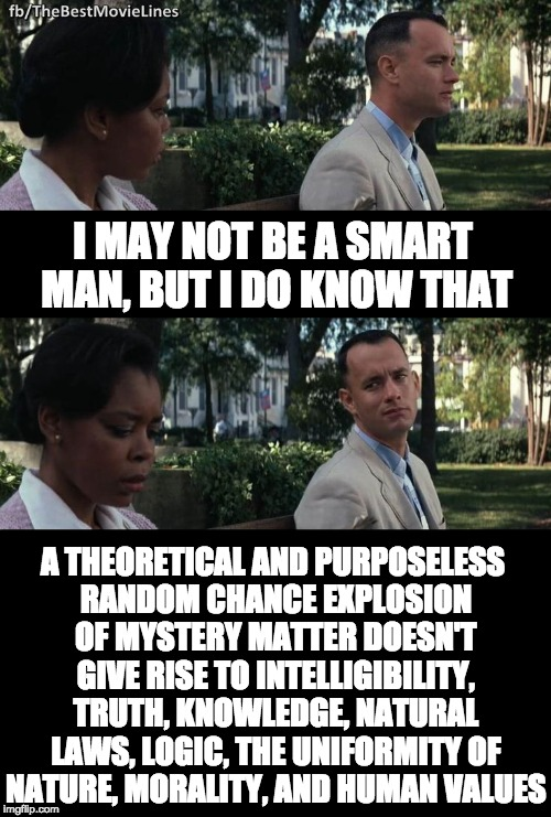 The Big Bang is absurd | I MAY NOT BE A SMART MAN, BUT I DO KNOW THAT A THEORETICAL AND PURPOSELESS RANDOM CHANCE EXPLOSION OF MYSTERY MATTER DOESN'T GIVE RISE TO IN | image tagged in forest gump | made w/ Imgflip meme maker