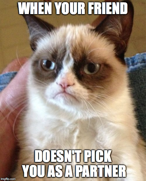 Grumpy Cat Meme | WHEN YOUR FRIEND DOESN'T PICK YOU AS A PARTNER | image tagged in memes,grumpy cat | made w/ Imgflip meme maker