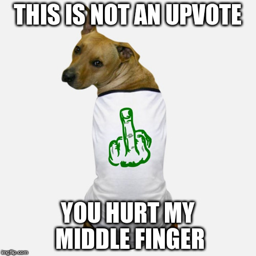 dog tshirt | THIS IS NOT AN UPVOTE YOU HURT MY MIDDLE FINGER | image tagged in dog tshirt | made w/ Imgflip meme maker