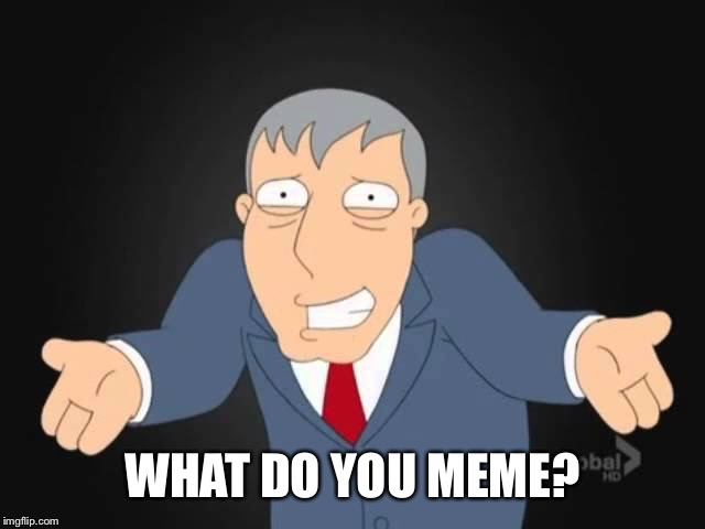 WHAT DO YOU MEME? | made w/ Imgflip meme maker