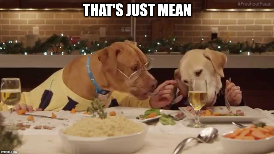 dog dinner | THAT'S JUST MEAN | image tagged in dog dinner | made w/ Imgflip meme maker