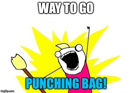 X All The Y Meme | WAY TO GO PUNCHING BAG! | image tagged in memes,x all the y | made w/ Imgflip meme maker