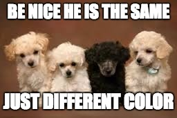 BE NICE HE IS THE SAME JUST DIFFERENT COLOR | image tagged in one different | made w/ Imgflip meme maker