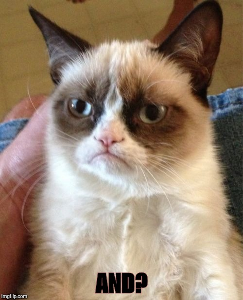 Grumpy Cat Meme | AND? | image tagged in memes,grumpy cat | made w/ Imgflip meme maker
