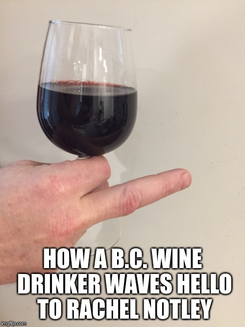 Rachel Notley B.C. wine humour | HOW A B.C. WINE DRINKER WAVES HELLO TO RACHEL NOTLEY | image tagged in wine | made w/ Imgflip meme maker