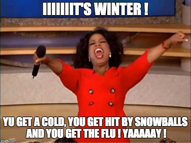 Oprah You Get A Meme | IIIIIIIT'S WINTER ! YU GET A COLD, YOU GET HIT BY SNOWBALLS AND YOU GET THE FLU ! YAAAAAY ! | image tagged in memes,oprah you get a | made w/ Imgflip meme maker