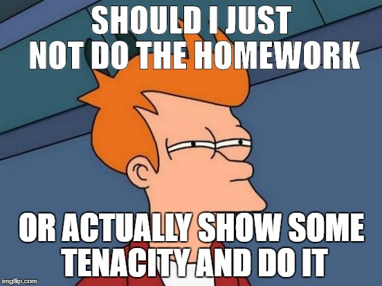 Futurama Fry Meme | SHOULD I JUST NOT DO THE HOMEWORK OR ACTUALLY SHOW SOME TENACITY AND DO IT | image tagged in memes,futurama fry | made w/ Imgflip meme maker