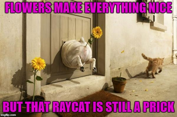 FLOWERS MAKE EVERYTHING NICE BUT THAT RAYCAT IS STILL A PRICK | made w/ Imgflip meme maker