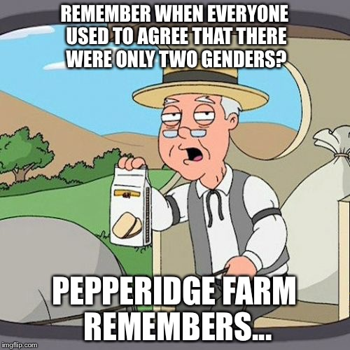 Pepperidge Farm Remembers Meme | REMEMBER WHEN EVERYONE USED TO AGREE THAT THERE WERE ONLY TWO GENDERS? PEPPERIDGE FARM REMEMBERS... | image tagged in memes,pepperidge farm remembers | made w/ Imgflip meme maker