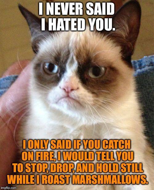 Human marshmallow roaster | I NEVER SAID I HATED YOU. I ONLY SAID IF YOU CATCH ON FIRE, I WOULD TELL YOU TO STOP, DROP, AND HOLD STILL WHILE I ROAST MARSHMALLOWS. | image tagged in memes,grumpy cat,marshmallow,fire,drop,still | made w/ Imgflip meme maker