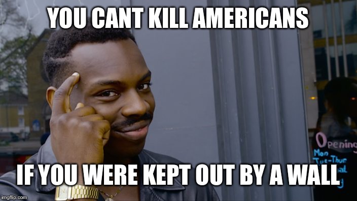 A Border Wall | YOU CANT KILL AMERICANS IF YOU WERE KEPT OUT BY A WALL | image tagged in you cant,trump right,menes menes memes,veans gesbs beans | made w/ Imgflip meme maker
