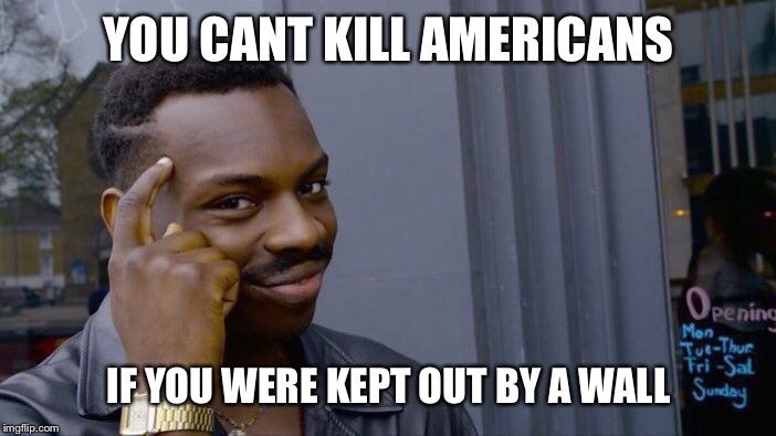 How about a border wall? | YOU CANT KILL AMERICANS IF YOU WERE KEPT OUT BY A WALL | image tagged in memes,roll safe think about it,the trump truth wall,meme | made w/ Imgflip meme maker