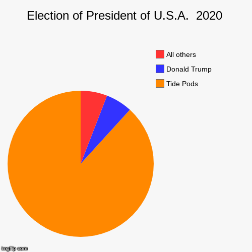 Election of President of U.S.A.  2020 | Tide Pods, Donald Trump, All others | image tagged in funny,pie charts | made w/ Imgflip pie chart maker