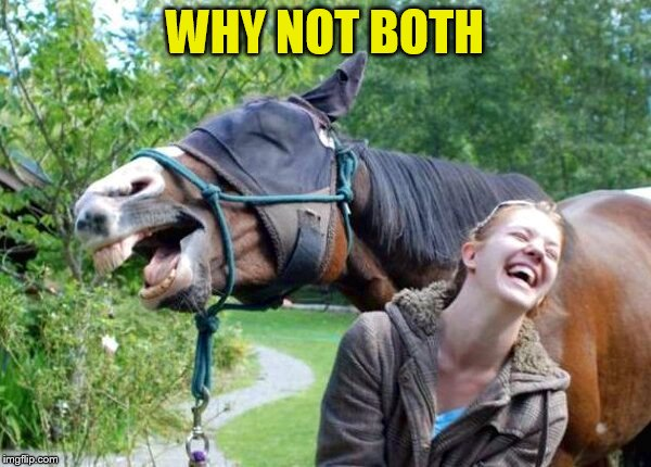 Laughing Horse | WHY NOT BOTH | image tagged in laughing horse | made w/ Imgflip meme maker