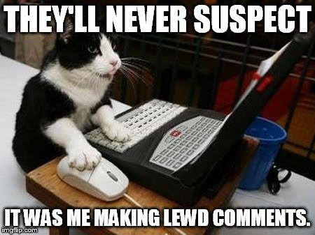 THEY'LL NEVER SUSPECT IT WAS ME MAKING LEWD COMMENTS. | image tagged in working cat | made w/ Imgflip meme maker