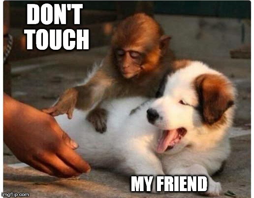 DON'T TOUCH MY FRIEND | made w/ Imgflip meme maker