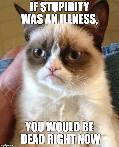 Grumpy Cat Meme | IF STUPIDITY WAS AN ILLNESS, YOU WOULD BE DEAD RIGHT NOW | image tagged in memes,grumpy cat,funny,stupidity,illness,dead | made w/ Imgflip meme maker