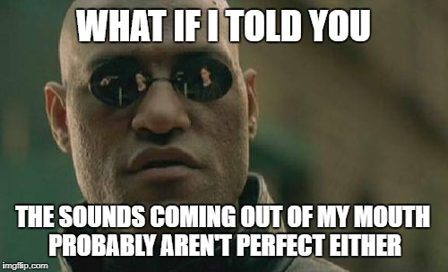 Matrix Morpheus Meme | WHAT IF I TOLD YOU THE SOUNDS COMING OUT OF MY MOUTH PROBABLY AREN'T PERFECT EITHER | image tagged in memes,matrix morpheus | made w/ Imgflip meme maker