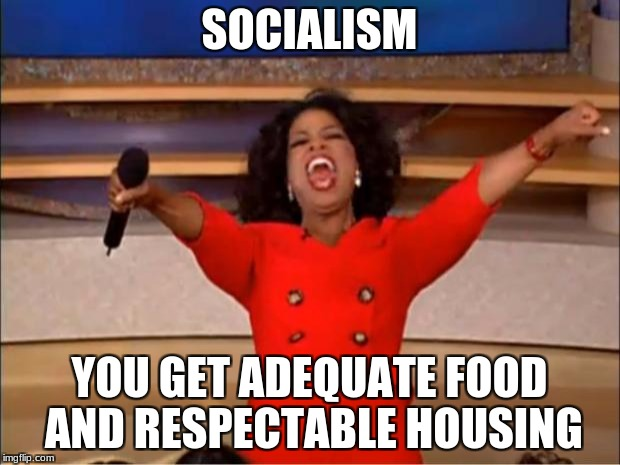 Oprah You Get A Meme | SOCIALISM YOU GET ADEQUATE FOOD AND RESPECTABLE HOUSING | image tagged in memes,oprah you get a | made w/ Imgflip meme maker