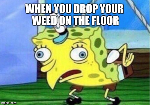 Mocking Spongebob Meme | WHEN YOU DROP YOUR WEED ON THE FLOOR | image tagged in memes,mocking spongebob | made w/ Imgflip meme maker