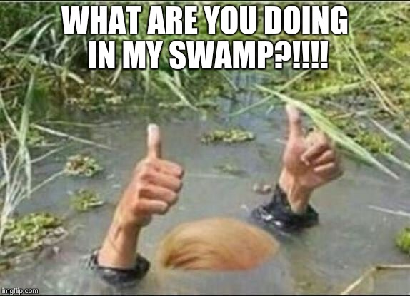 Trump Swamp Creature | WHAT ARE YOU DOING IN MY SWAMP?!!!! | image tagged in trump swamp creature | made w/ Imgflip meme maker