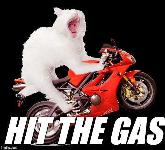HIT THE GAS | made w/ Imgflip meme maker