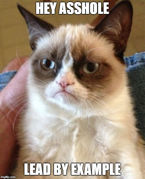 Grumpy Cat Meme | HEY ASSHOLE LEAD BY EXAMPLE | image tagged in memes,grumpy cat | made w/ Imgflip meme maker