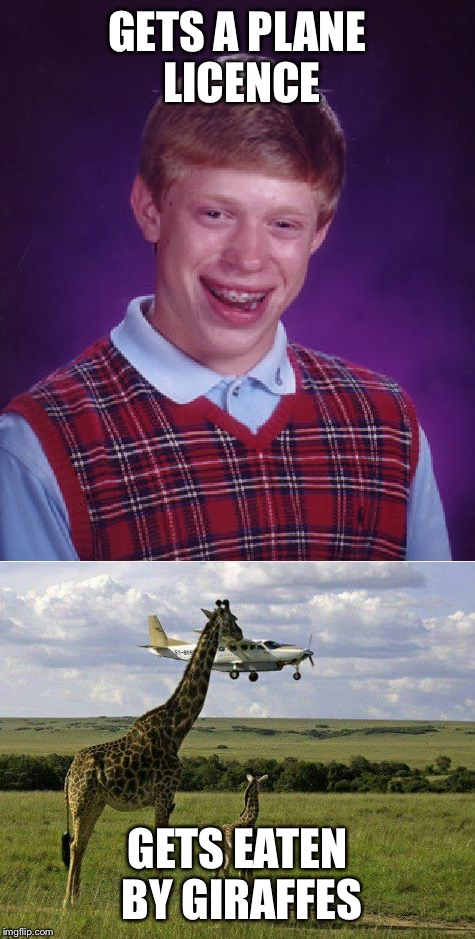 Bad luck Brian gets a plane | GETS A PLANE LICENCE GETS EATEN BY GIRAFFES | image tagged in memes,bad luck brian,planes,giraffes,animals,eaten | made w/ Imgflip meme maker