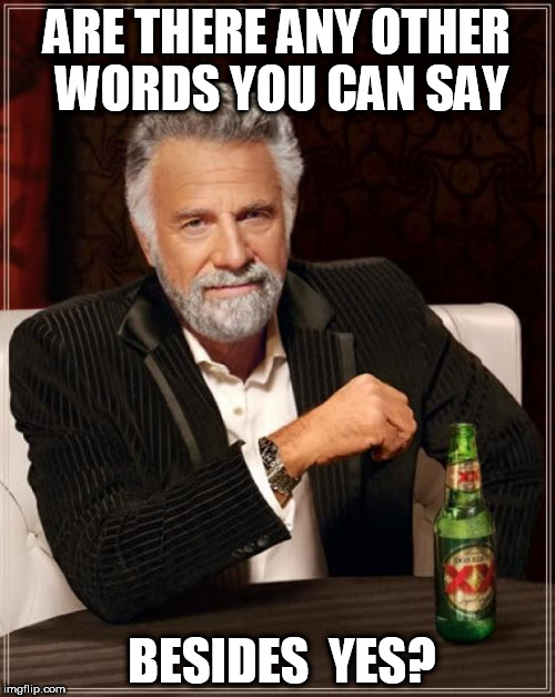 The Most Interesting Man In The World Meme | ARE THERE ANY OTHER WORDS YOU CAN SAY BESIDES  YES? | image tagged in memes,the most interesting man in the world | made w/ Imgflip meme maker
