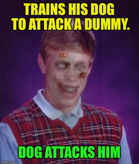 TRAINS HIS DOG TO ATTACK A DUMMY. DOG ATTACKS HIM | made w/ Imgflip meme maker