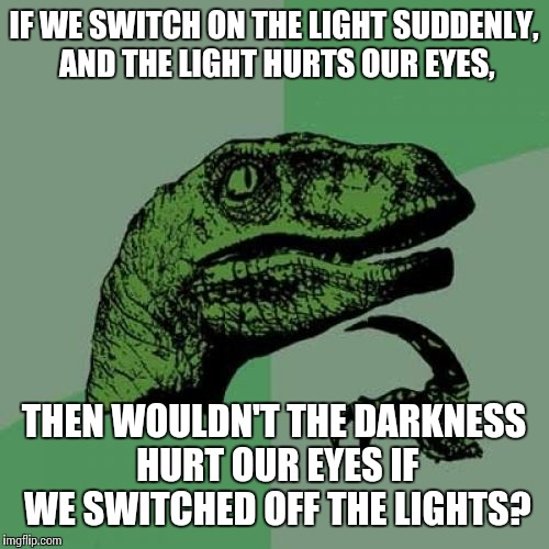 AHH, THE STUPID DARKNESS IS HURTING MY EYES! | IF WE SWITCH ON THE LIGHT SUDDENLY, AND THE LIGHT HURTS OUR EYES, THEN WOULDN'T THE DARKNESS HURT OUR EYES IF WE SWITCHED OFF THE LIGHTS? | image tagged in memes,philosoraptor,darkness,shower thoughts,high thoughts | made w/ Imgflip meme maker