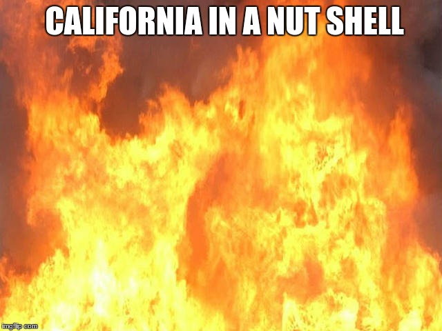 CALIFORNIA IN A NUT SHELL | image tagged in fire | made w/ Imgflip meme maker