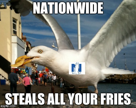 Nationwide Seagull Parody | NATIONWIDE STEALS ALL YOUR FRIES | image tagged in seagull,french fries,nationwide | made w/ Imgflip meme maker
