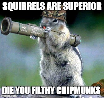 Squirrels rule | SQUIRRELS ARE SUPERIOR DIE YOU FILTHY CHIPMUNKS | image tagged in memes,bazooka squirrel,animals,funny | made w/ Imgflip meme maker