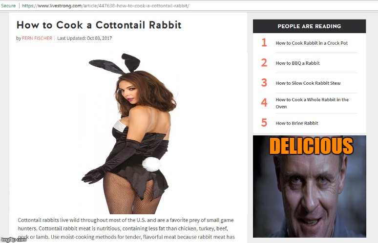 Hannibal Lecter Cookbook | DELICIOUS | image tagged in memes,cooking,hannibal lecter,playboy bunny,nsfw | made w/ Imgflip meme maker
