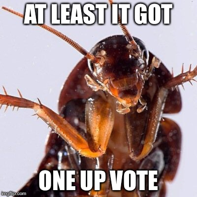 Roach | AT LEAST IT GOT ONE UP VOTE | image tagged in roach | made w/ Imgflip meme maker
