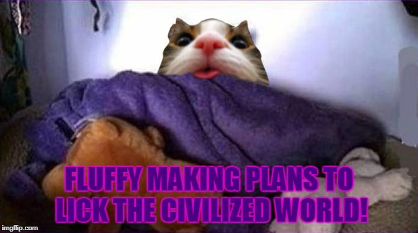 Fluffy Making Plans | FLUFFY MAKING PLANS TO LICK THE CIVILIZED WORLD! | image tagged in making fluffy plans,memes,death of a salesman | made w/ Imgflip meme maker