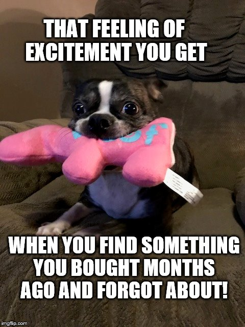 THAT FEELING OF EXCITEMENT YOU GET WHEN YOU FIND SOMETHING YOU BOUGHT MONTHS AGO AND FORGOT ABOUT! | image tagged in excitement | made w/ Imgflip meme maker