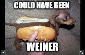 COULD HAVE BEEN WEINER | made w/ Imgflip meme maker