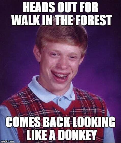 Bad Luck Brian Meme | HEADS OUT FOR WALK IN THE FOREST COMES BACK LOOKING LIKE A DONKEY | image tagged in memes,bad luck brian | made w/ Imgflip meme maker